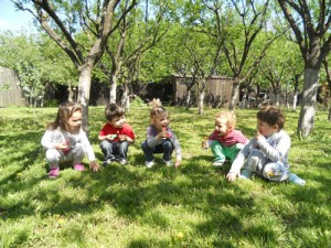 Activitati cresa | Cresa Irina Sector 6